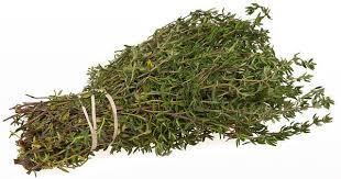 Cea mai puternica planta care distruge Streptococul, Herpesul, Candida si virusurile gripale